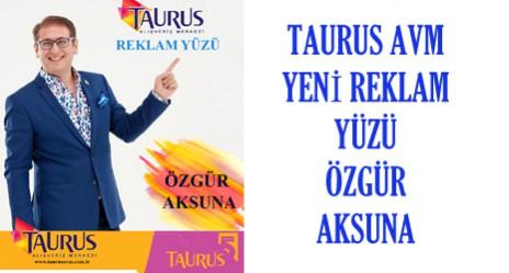 TAURUS WEB